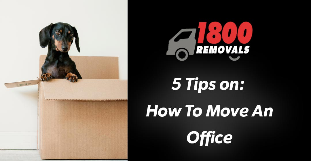 5 Tips On Moving An Office